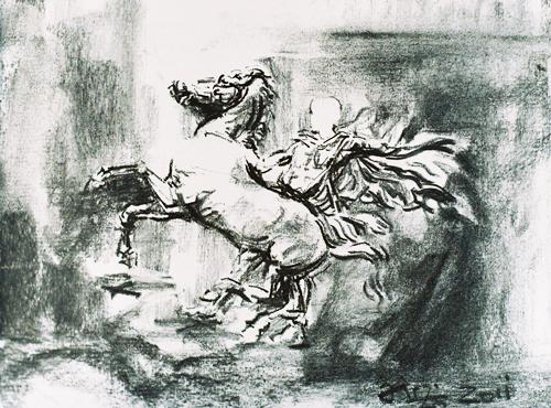 Florin-Bârză---Cai-16