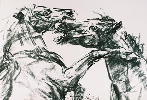 Florin-Bârză---Cai-19