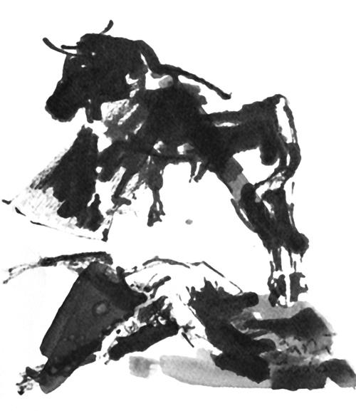 Florin-Bârză---Corrida-7