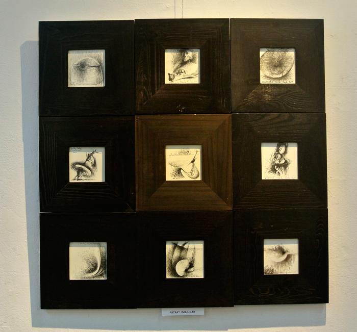 dumitru-radu-galeria-simeza-2014-14