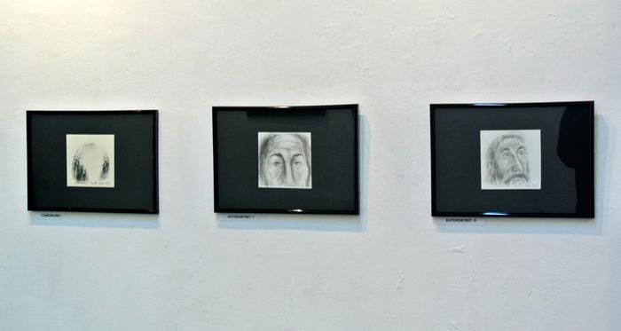 dumitru-radu-galeria-simeza-2014-19